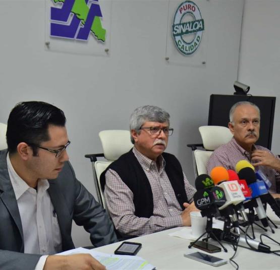 LuzNoticias_HomeStageSecundario