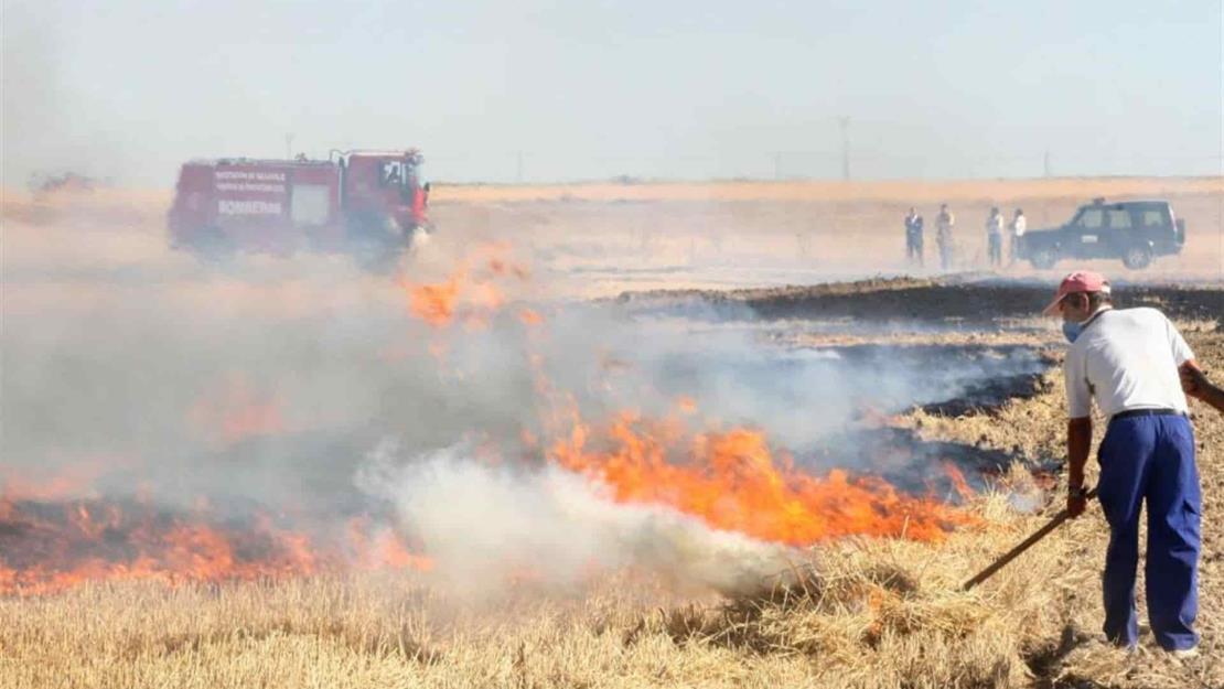 Sin reportes ante Medio Ambiente por quema de soca en Ahome