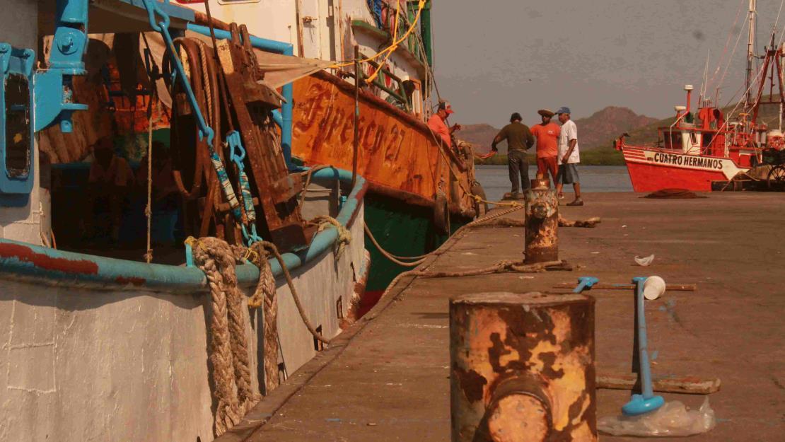 La mayoría de los pescadores no saldrá por segunda ocasión: Michel Luna