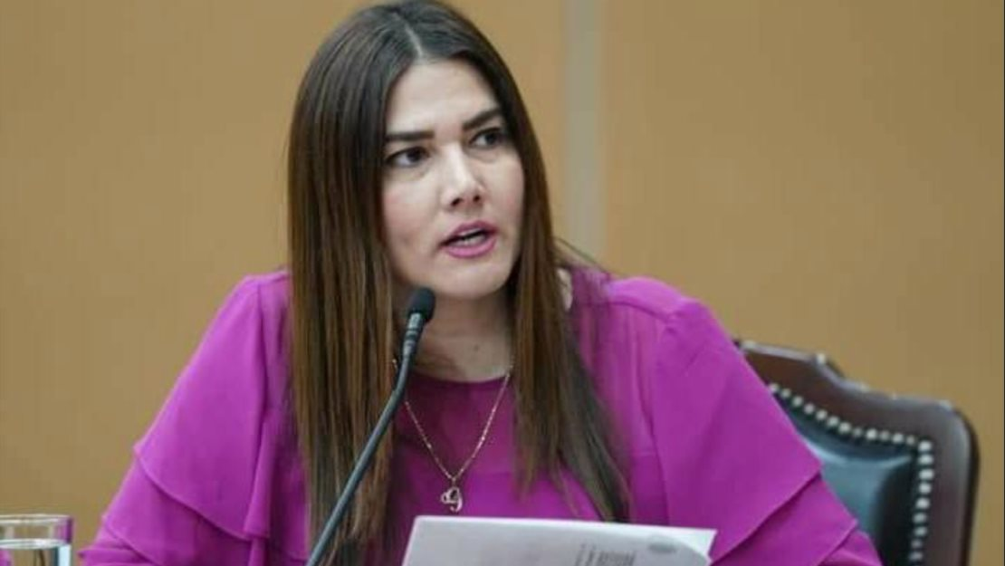 Diputados no deben de politizar apoyo a personal del Pediátrico: Iribe