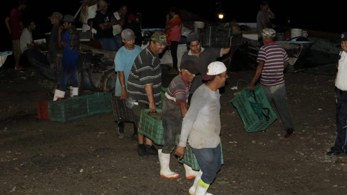 Registran pescadores 290.15 t en el primer día de capturas del camarón