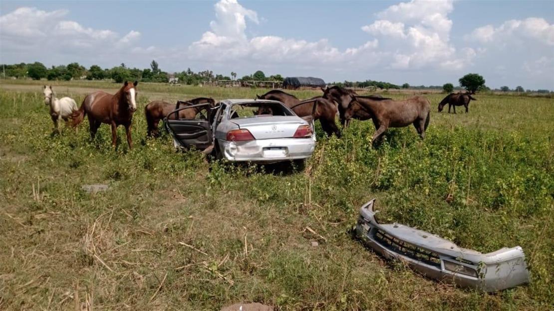 Al menos tres lesionados en aparatosos accidentes en Guasave durante el día de asueto