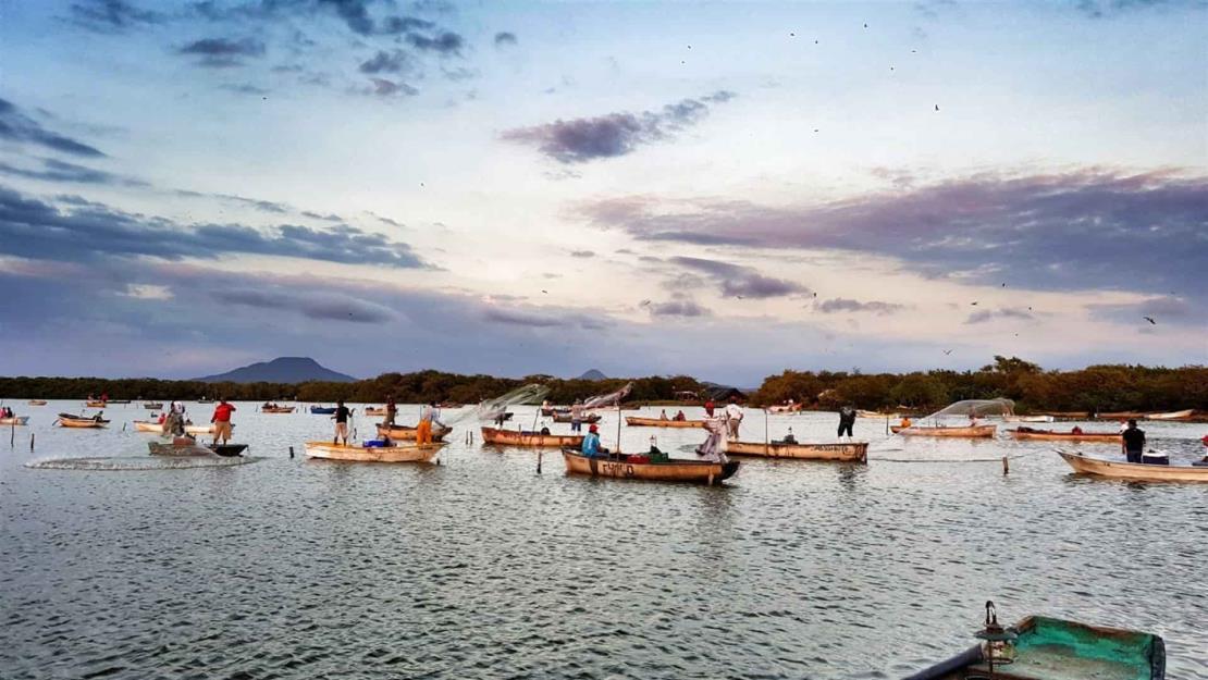 Marginación, drogadicción y trasiego de drogas en campos pesqueros: Sesesp