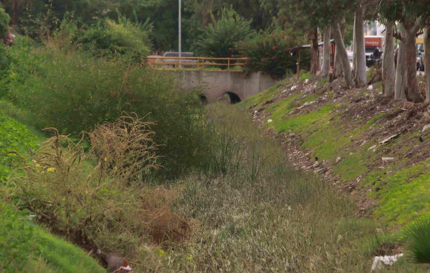 No le temen a las inundaciones, aún arrojan basura al dren Álamo