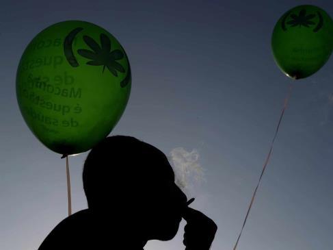 Coinciden senadores y diputados que despenalización de la mariguana beneficiará a la población