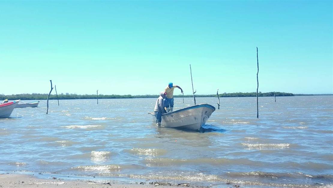 El Bien Pesca es un mejoralito para el sector: pescadores