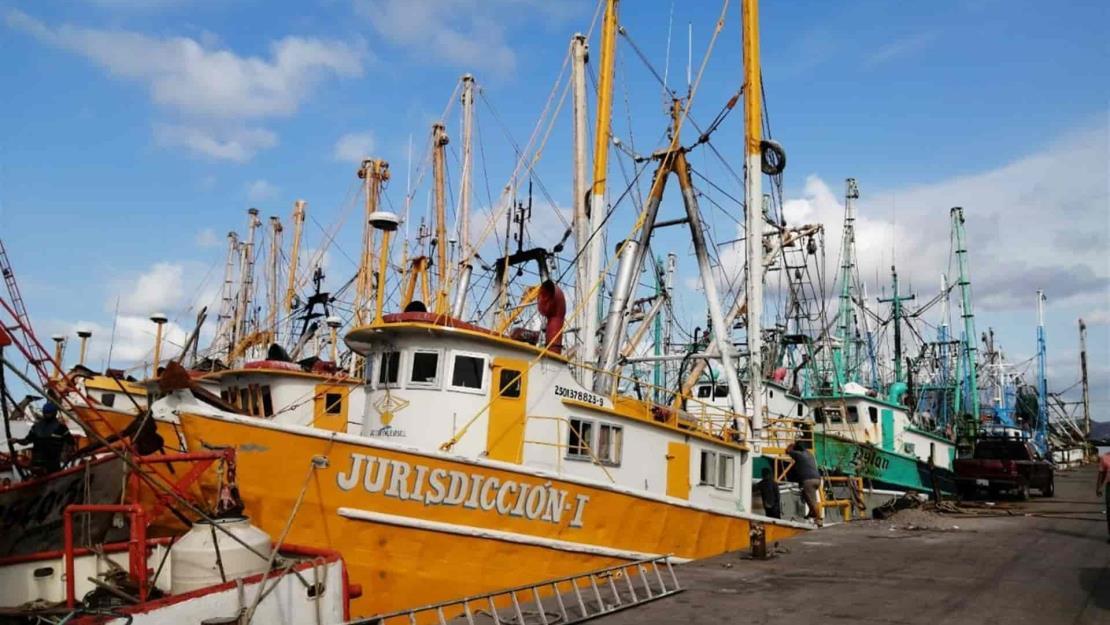 Pocas capturas y diésel caro, armadores amarrarán más barcos