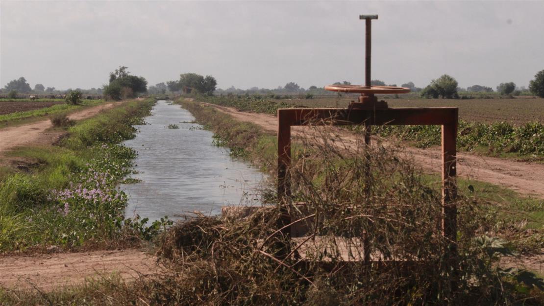 Módulos del Distrito 075 solicitan 100 millones de m3 más de agua