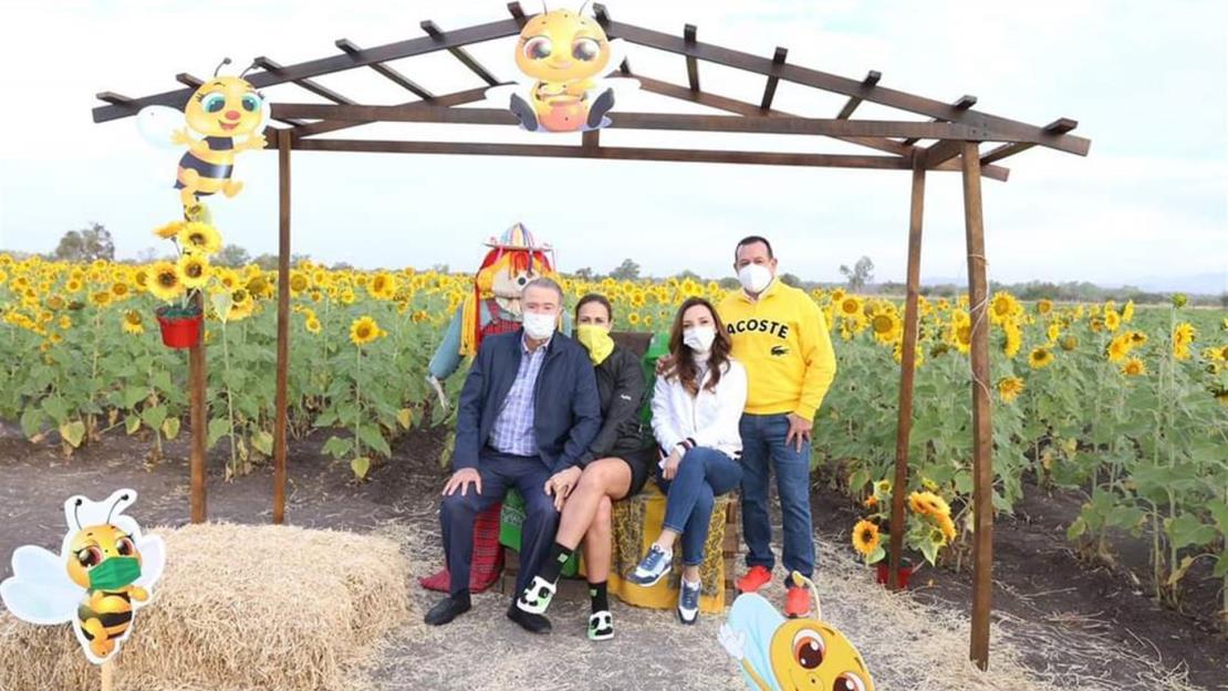 Visitan Quirino Ordaz y Rosy Fuentes el campo de girasoles en Mocorito