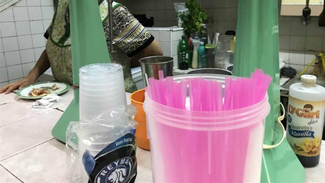 Incrementa 150 % registro de distribuidores de plásticos biodegradables en Sinaloa: Sedesu