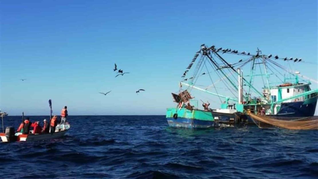 Pescadores denuncian que nadie vigila el mar