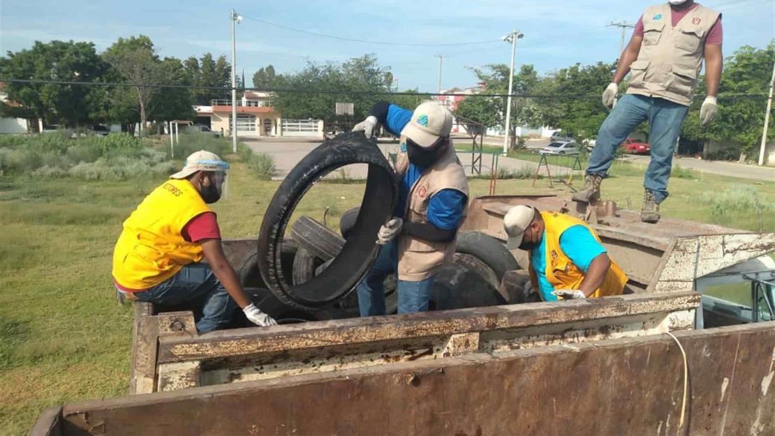A la baja y controlado el dengue en la zona de Mazatlán: SSA