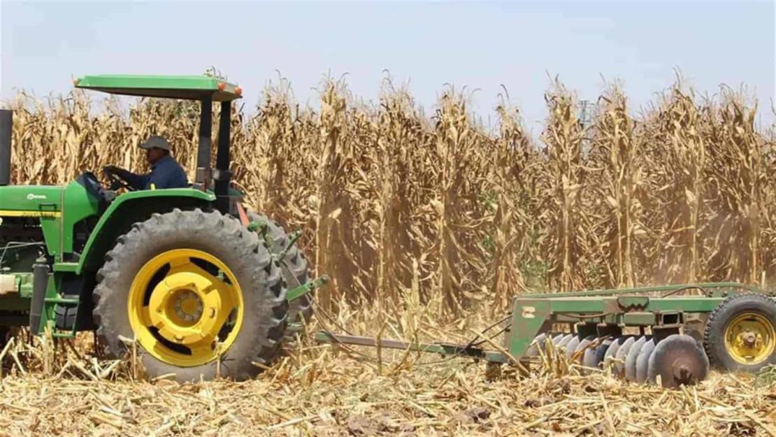 Hoy es Día del Trabajador Agrícola: ¿Sabes cuál es el valor de esta actividad en números?