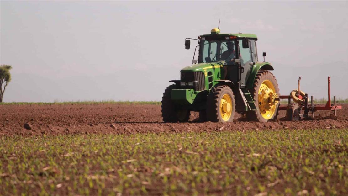 Productores de Sinaloa, en contra de la eliminación del seguro agrícola