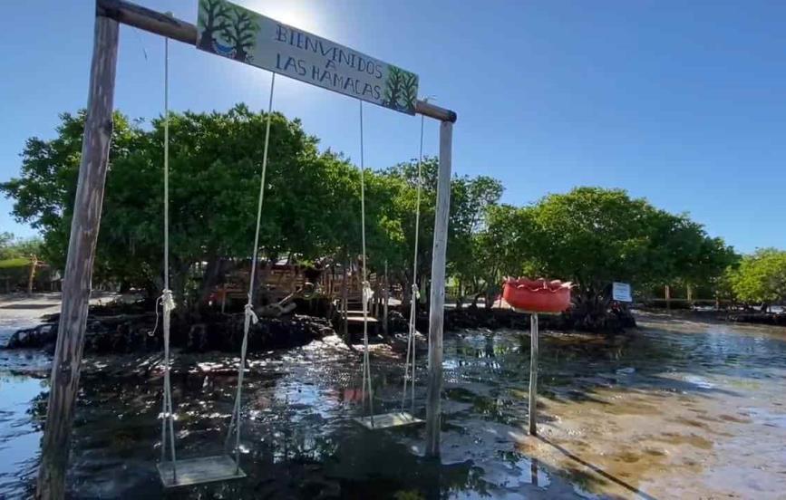 «Las Hamacas», restaurante escondido entre el paraíso de un manglar
